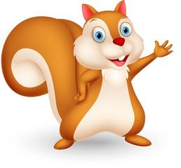 Squirrel cartoon presenting
