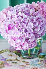 beautiful hydrangea flowers in a vase on a colorful table .