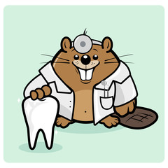 Beaver dentist holding a healthy tooth