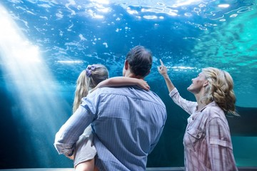 Familly looking at fish tank
