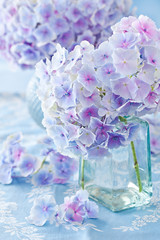 beautiful hydrangea flowers in a vase on a blue background .
