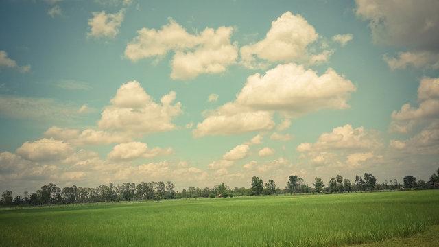 farm,landscape,backgorund,wall,green,sky,nature,field