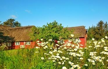 Idylle in Dänemark