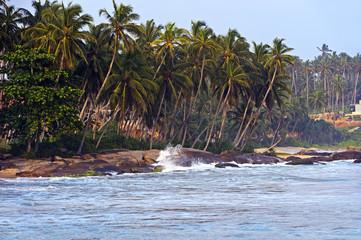 Keuken foto achterwand Noordzee Sri Lanka