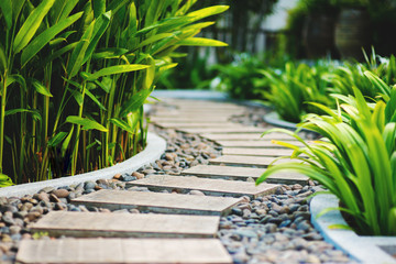Alley in tropical garden Fototapete