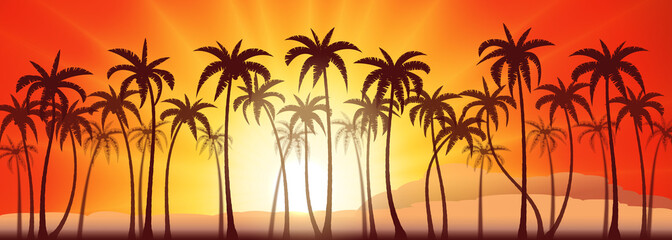 Tropical sunset with palm trees, vector background