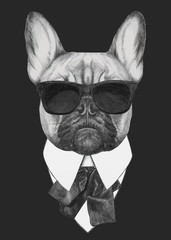 Hand drawn fashion Illustration of French Bulldog. Vector isolated elements.
