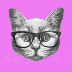 Hand drawn portrait of Cat with glasses. Vector isolated elements.