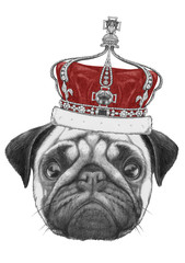 Original drawing of Pug Dog with crown. Isolated on white background