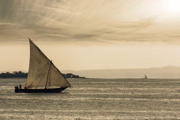 dhow traditional sailing vessel