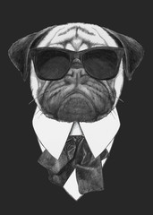 Hand drawn fashion Illustration of Pug Dog with sunglasses. Vector isolated elements.
