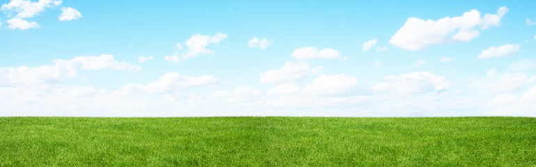 Photo sur Plexiglas Culture Green field and blue sky