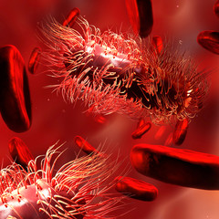 Detailed 3d illustration of virus, bacteria cells infecting human body.