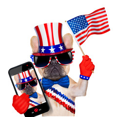 4th oh july dog