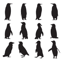 Collection of penguins' silhouettes