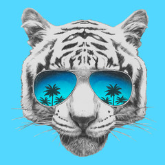 Hand drawn portrait of Tiger with mirror sunglasses. Vector isolated elements