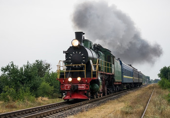 Garden Poster Bestsellers Old steam locomotive travels by rail