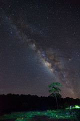 Silhouette of tree with cloud and beautiful milkyway on a night