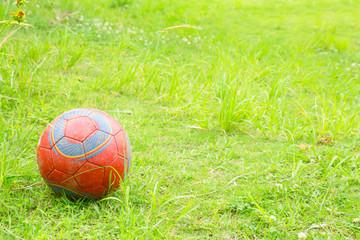 新緑とサッカーボール