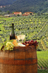 Fototapete - White wine with barrel on vineyard in Chianti, Tuscany, Italy