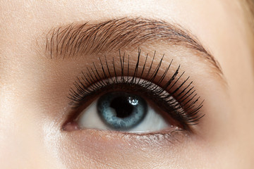Close-up of make-up eye with long eyelashes