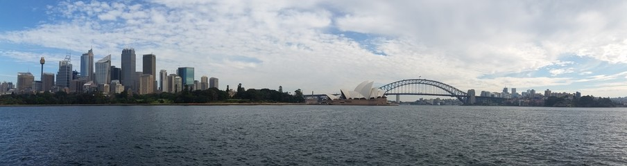 Fototapete - Sydney City from Mrs Macquarie Point