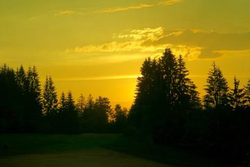 Idyllischer Sonnenuntergang im Schwarzwald
