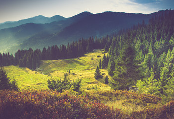 Photo sur Aluminium Colline Beautiful summer mountain landscape at sunshine.