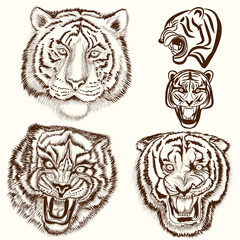 Vector set of hand drawn tattoo with tiger animals
