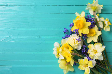 Background with bright colorful yellow and blue spring flowers on green  painted wooden planks. Selective focus. Place for text.