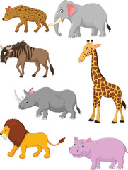 Collection animal africa