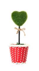 plant in pot shaped like heart