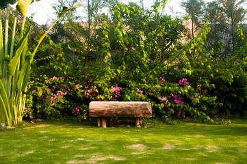 Wooden bench in tropical garden