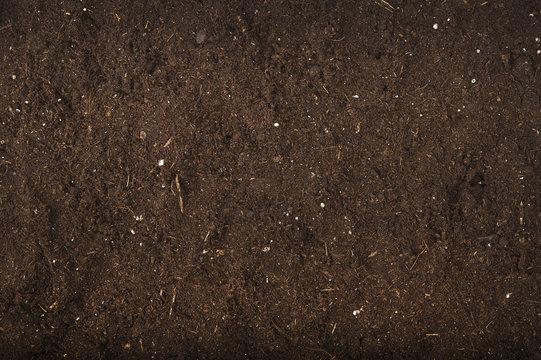 brown background of soil for gardening studio shoot