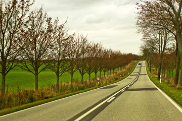 Country landscape and road