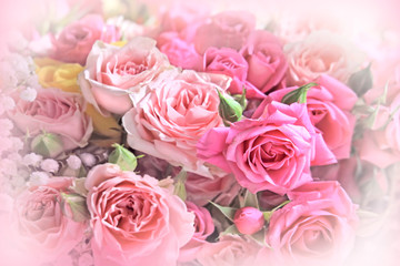 Roses bouquet  on soft background