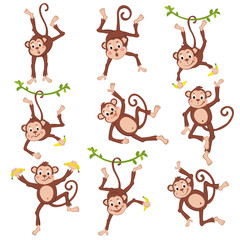 Cute funny monkeys set