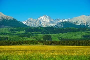 Wall Mural - Tatra Mountains