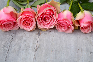 Three pink yellow roses on a old used grey wooden background with empty space