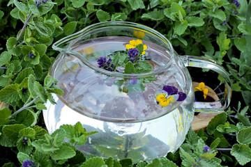 Healthy herbal sage  tea  in pot