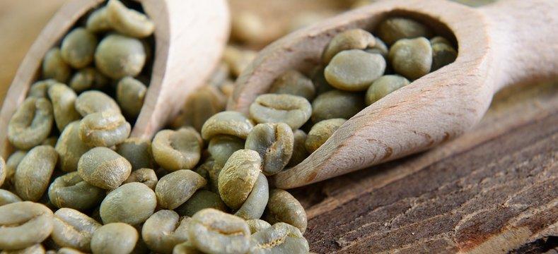 Rohkaffee Grüne Bio Kaffeebohnen