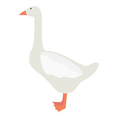 Flat goose illustartion