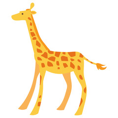 Flat giraffe illustration