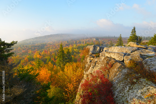 Wall mural Foggy, Autumn Sunrise at Bear Rocks, WV
