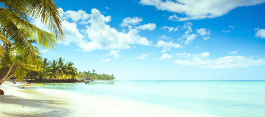 Photo sur Plexiglas Caraibes White sand beach