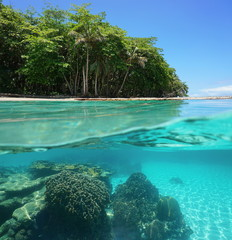 Tropical shore above and below sea surface