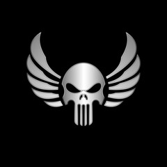Skull with Wings Vector Illustration