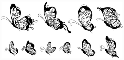 Set of butterflies, side view.