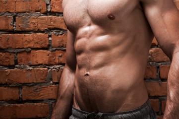 Perfect torso.