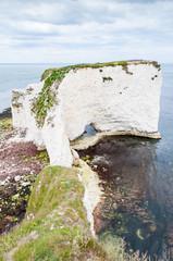 Old Harry Rocks, Dorset, United Kingdom